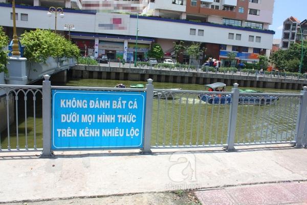 Quá ô nhiễm, cá chết hàng loạt dưới kênh Nhiêu Lộc 10