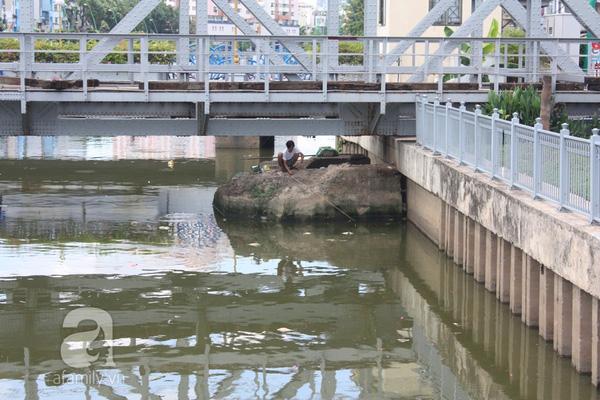 Quá ô nhiễm, cá chết hàng loạt dưới kênh Nhiêu Lộc 13