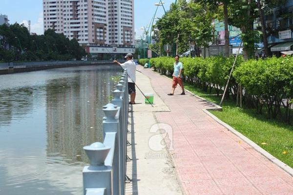 Quá ô nhiễm, cá chết hàng loạt dưới kênh Nhiêu Lộc 15