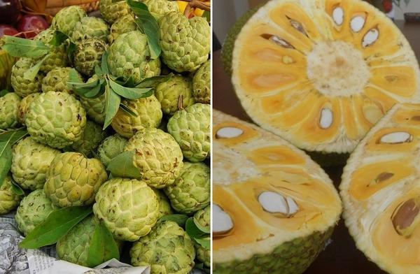 """TP.HCM: Giá trái cây bình dân đắt gấp 3 lần trái cây """"quý tộc"""" 4"""