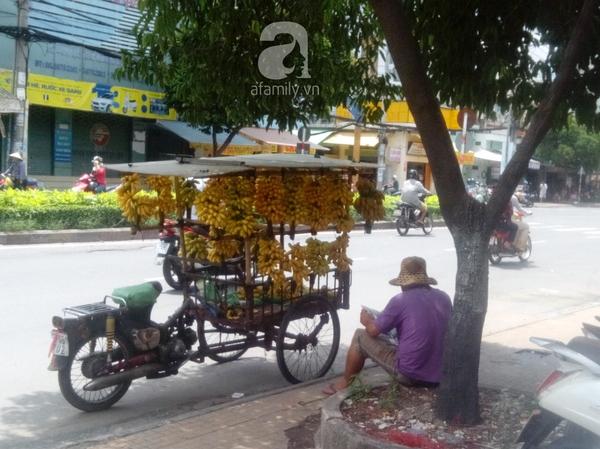 """TP.HCM: Giá trái cây bình dân đắt gấp 3 lần trái cây """"quý tộc"""" 5"""