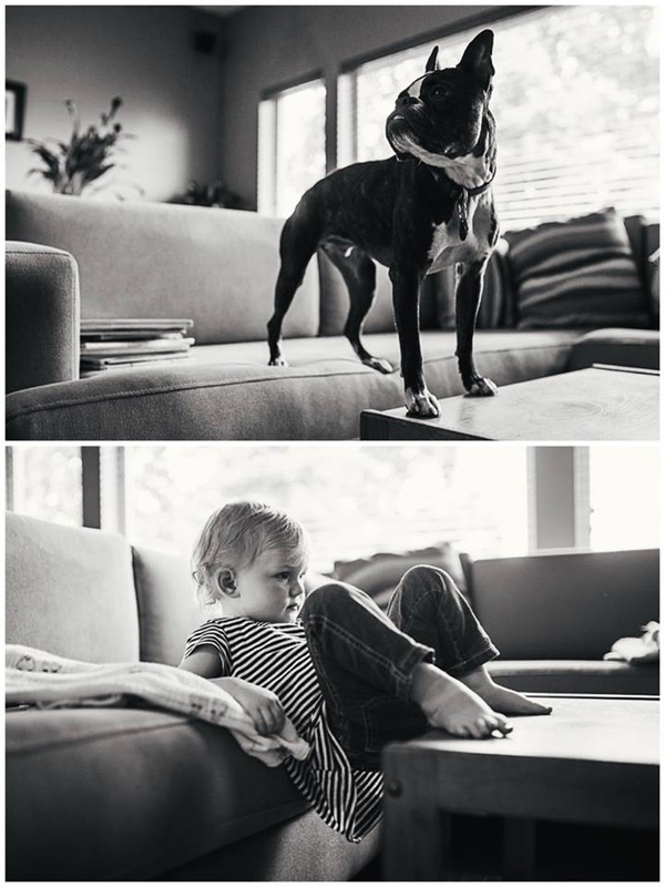 Mẹ Canada nổi tiếng với hàng trăm bức ảnh chụp con gái bên cún cưng
