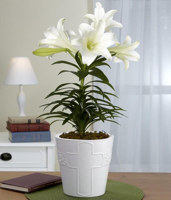 5 cách cắm hoa ly trang trí nhà tuyệt đẹp 4