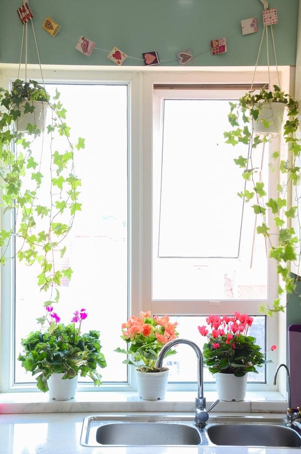 Ngắm căn hộ có góc vườn truyền cảm hứng cho cả khu chung cư ở Hà Nội 12