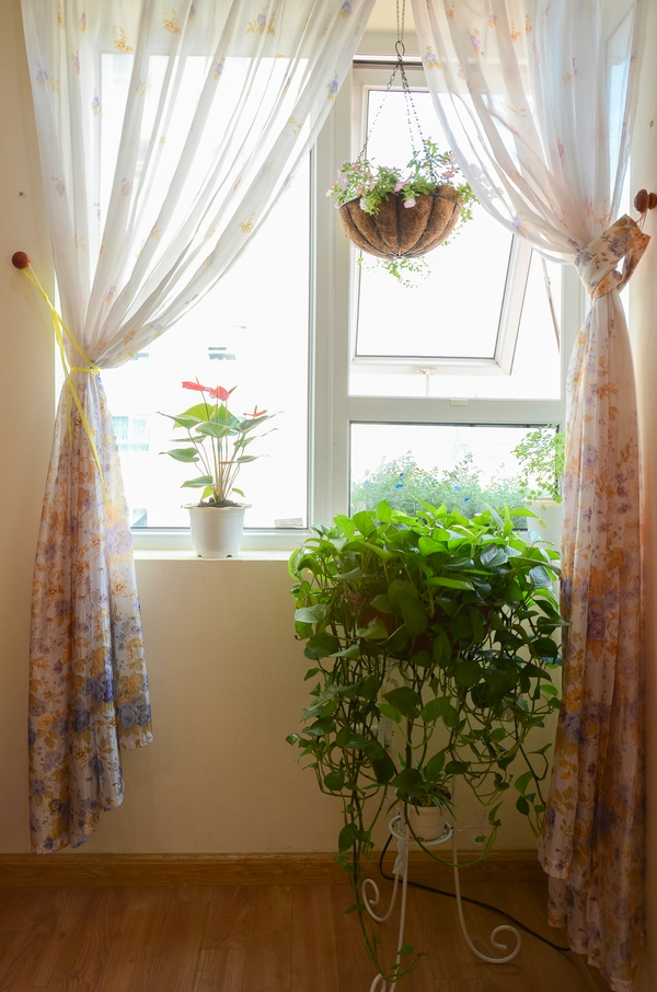 Ngắm căn hộ có góc vườn truyền cảm hứng cho cả khu chung cư ở Hà Nội 13