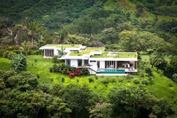 """Những ngôi nhà """"đội cây"""" độc đáo nhất thế giới (P2) 7"""