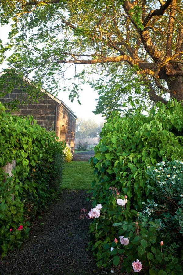 Ngắm ngôi nhà có khu vườn đầy nắng gió và hoa 8