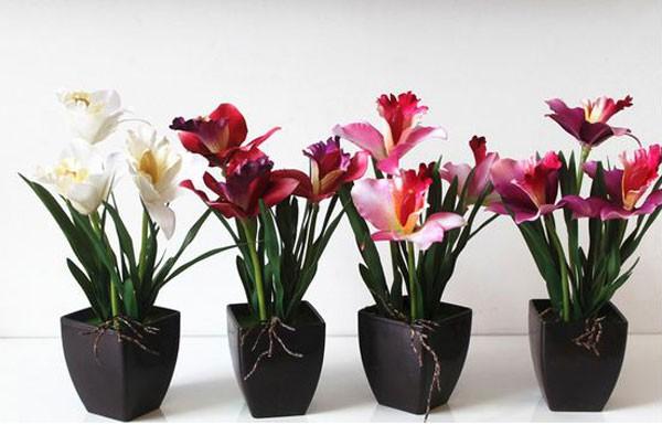 Mẫu chậu hoa để bàn công sở xinh xắn có giá dưới 200 nghìn đồng 23
