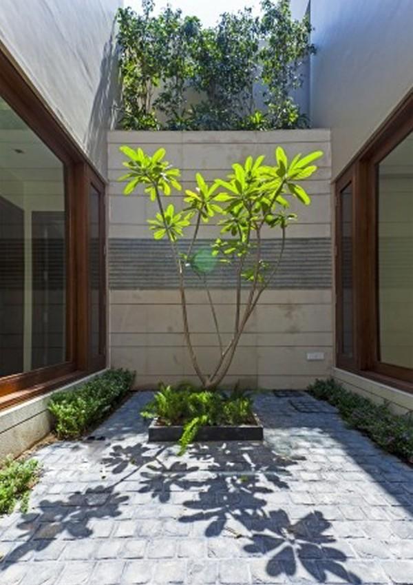 Tạo không gian sống sinh thái cho nhà phố với giếng trời 7