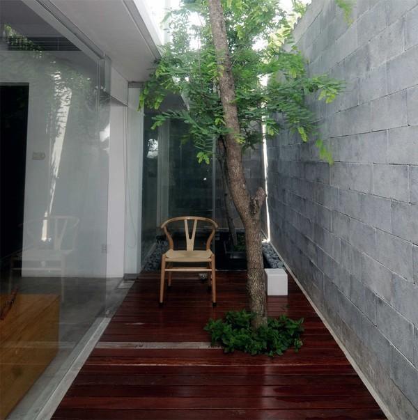 Tạo không gian sống sinh thái cho nhà phố với giếng trời 4