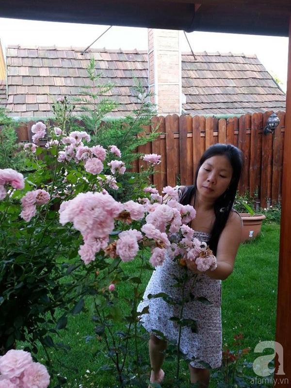 Ghé thăm khu vườn đậm chất Việt trên đất Hungary 22