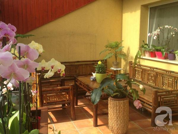 Ghé thăm khu vườn đậm chất Việt trên đất Hungary 15