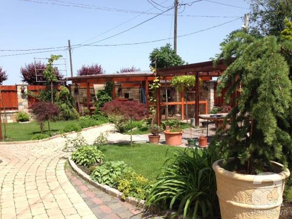 Ghé thăm khu vườn đậm chất Việt trên đất Hungary 4