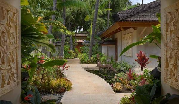10 bước để sở hữu khu vườn nhiệt đới đầy sức sống 3
