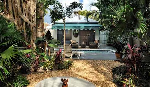 10 bước để sở hữu khu vườn nhiệt đới đầy sức sống 4