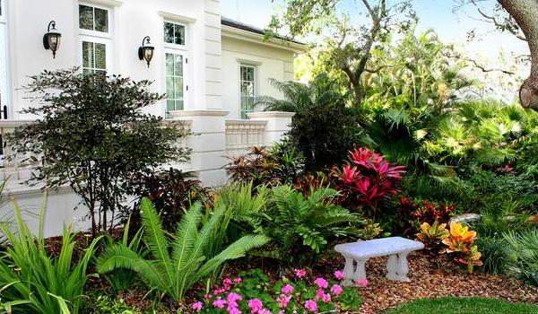 10 bước để sở hữu khu vườn nhiệt đới đầy sức sống 7