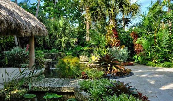 10 bước để sở hữu khu vườn nhiệt đới đầy sức sống 9