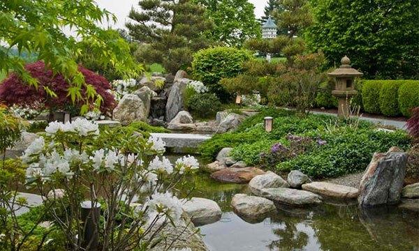 Những thiết kế hồ nước nhỏ xinh cho sân vườn 11