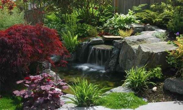 Những thiết kế hồ nước nhỏ xinh cho sân vườn 2