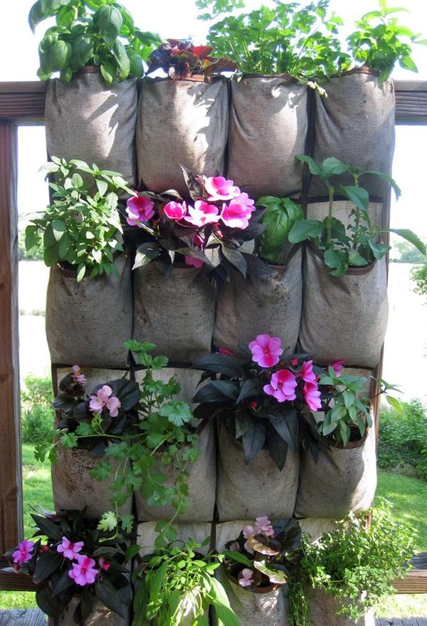 Ý tưởng làm vườn treo cực đơn giản 7