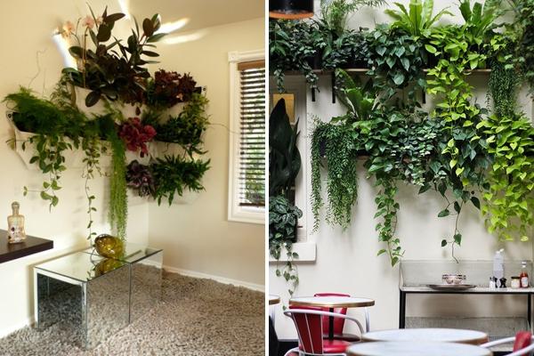 Ý tưởng làm vườn treo cực đơn giản 11