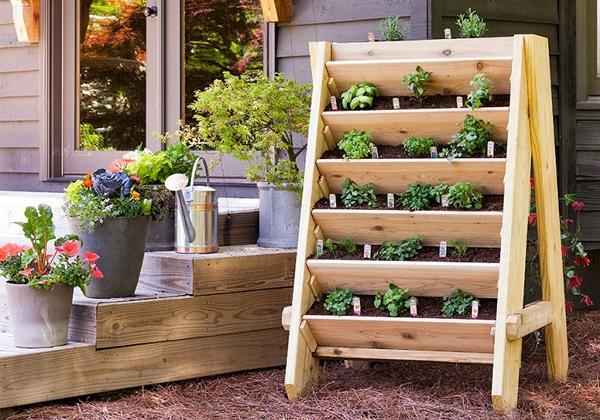 Ý tưởng làm vườn treo cực đơn giản 12