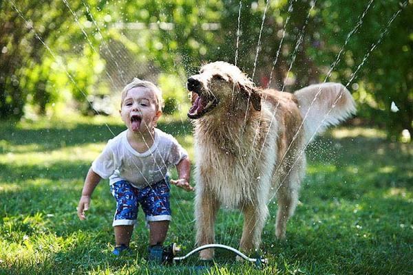 bộ ảnh bé và cún cưng 11