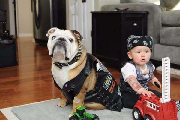 bộ ảnh bé và cún cưng 12
