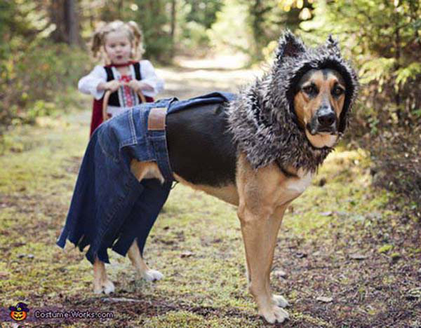 bộ ảnh bé và cún cưng 14