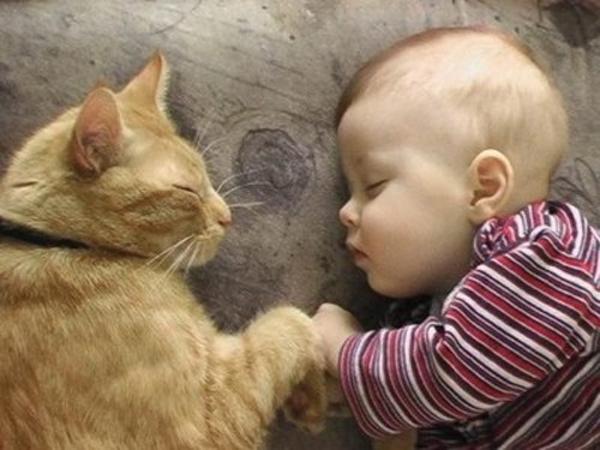 Không thể nhịn cười với chùm ảnh bé hài hước khi ngủ 5