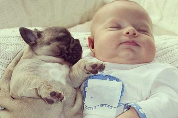 Ngẩn ngơ trước loạt ảnh siêu dễ thương của bé với cún cưng 6