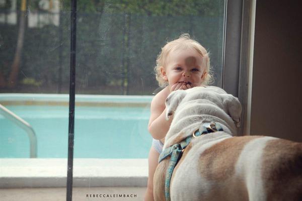 Tình bạn cực đáng yêu giữa cô bé 4 tuổi và chó cưng 17