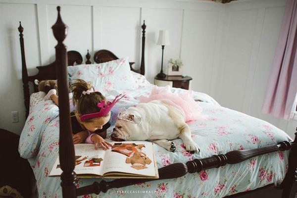 Tình bạn cực đáng yêu giữa cô bé 4 tuổi và chó cưng 21