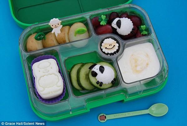 Bà mẹ nổi tiếng vì làm cho con những hộp cơm trưa tuyệt đẹp  4