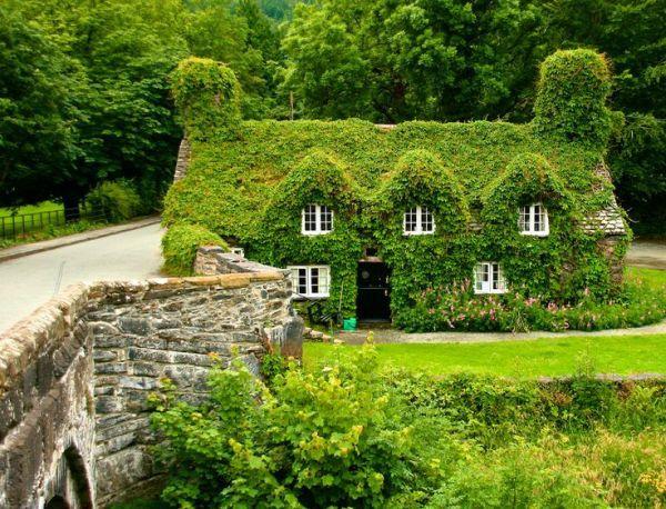 Chiêm ngưỡng những ngôi nhà cổ tích giữa đời thực 1