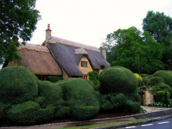 Chiêm ngưỡng những ngôi nhà cổ tích giữa đời thực 10