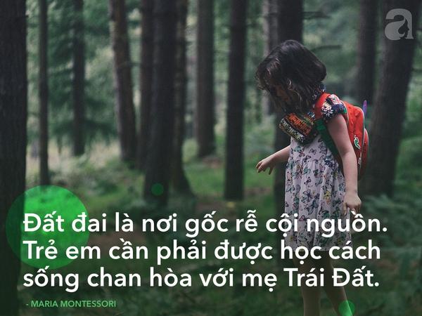 Giáo dục Montessori 5
