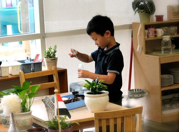 Hoạt động Montessori 2