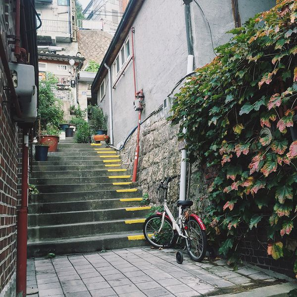 Samcheong