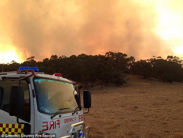 Cháy rừng nghiêm trọng ở Nam Úc, hàng nghìn người di cư 2