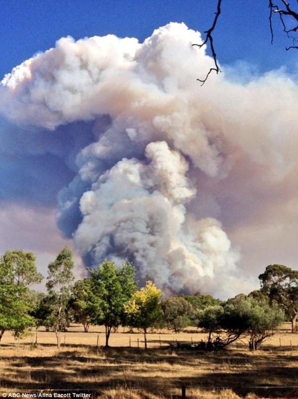 Cháy rừng nghiêm trọng ở Nam Úc, hàng nghìn người di cư 5
