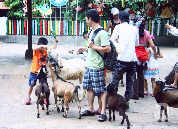 vườn thú thiếu nhi_1