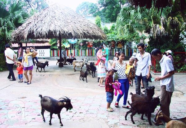 vườn thú thiếu nhi_2