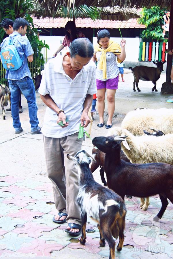 vườn thú thiếu nhi_4