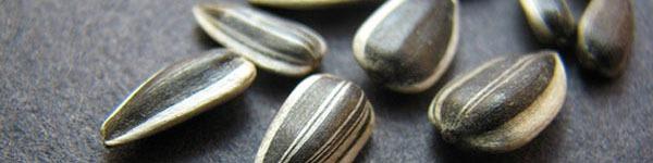 Các loại hạt cực tốt cho sức khỏe mà bạn nên ăn 5