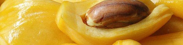 Lợi ích của bắp cải đối với sức khỏe 2