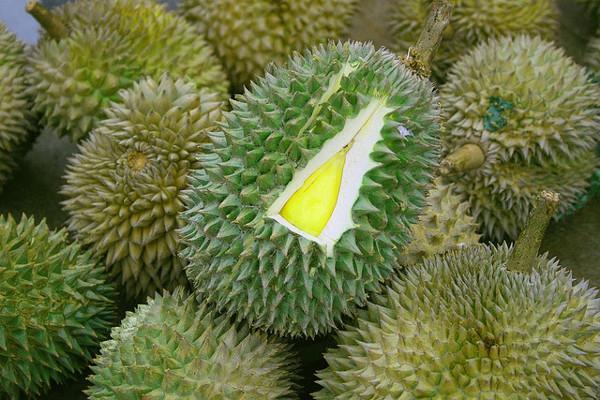 12 lý do chính đáng mà bạn nên ăn sầu riêng 1