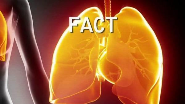 5 sự thật về bệnh viêm phổi tất cả mọi người cần biết 1
