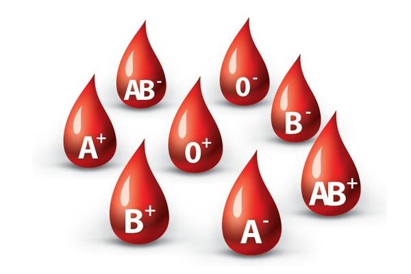 Kết quả hình ảnh cho thực phẩm tốt cho người nhóm máu B Rh+