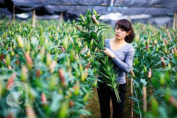 4 địa điểm chụp ảnh với hoa đẹp hút hồn ở Hà Nội 5